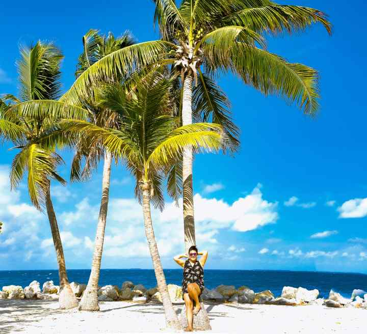 Key West Florida Palm Tree Her Life Adventures | herlifeadventures.blog | #traveltips #usdestinations #travelhacks #travelguide #adventuretravel #roadtrip #nationalpark #nationalparkroadtrip #travelpacking