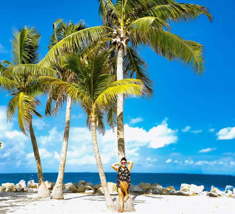 Key West Florida Palm Tree Her Life Adventures | herlifeadventures.blog | #traveltips #usdestinations #travelhacks #travelguide #adventuretravel #roadtrip #nationalpark #nationalparkroadtrip #travelpacking