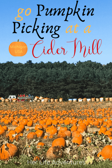 Visit Wiard's Orchard and go pumpkin picking. Check out 10 other of the best cider mills in Michigan; find out what they are, and and what to do when you visit Michigan in fall. | HerLifeAdventures | #cidermill #cidermilldonuts #michigan #falltreats #applecider #homemadedonuts #applepicking #falldesserts #cidermilldoughnuts #falltravel #traveldestinations #whatisacidermill
