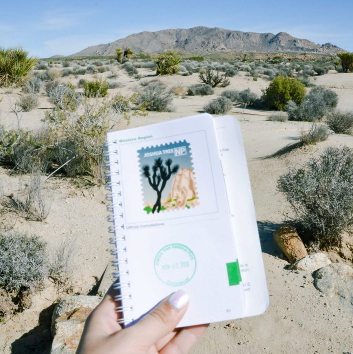 Joshua Tree National Park in California is an exciting National Park and a must visit travel destination in the United States #nationalparks #joshuatree #california #usdestinations