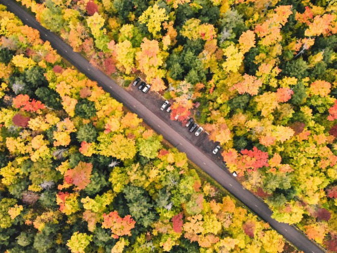 Take a road trip this fall along the beautiful forests of Michigan. The bright fall colors will dazzle you along the best drives Michigan offers!