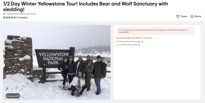 Half day tour to Yellowstone National Park from Big Sky Montana