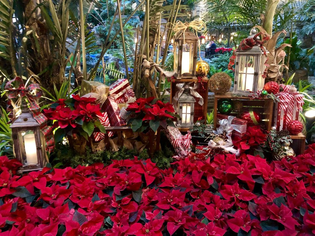 Poinsettia decor at the Cascades Pavilion at Gaylord Opryland Resort
