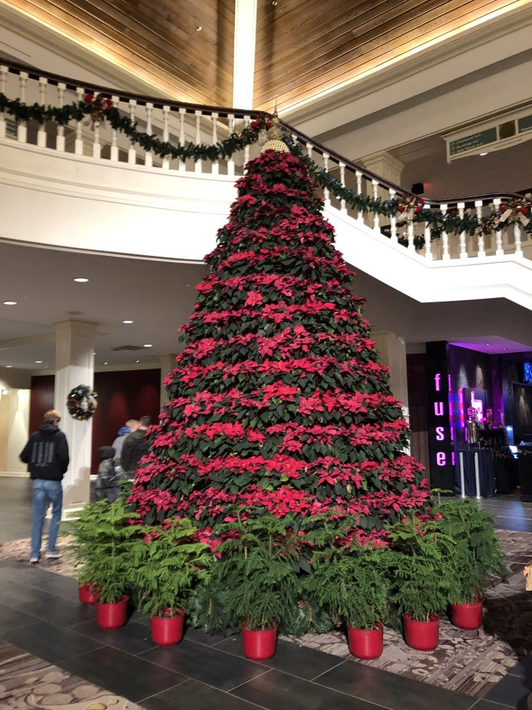 The Poinsettia Tree in the Magnolia Pavilion at Gaylord Opryland Resort