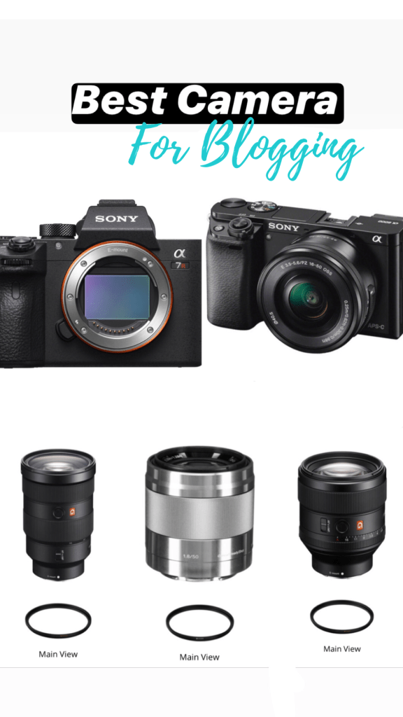 Sony a6000 and Sony a7riii; the best camera for blogging