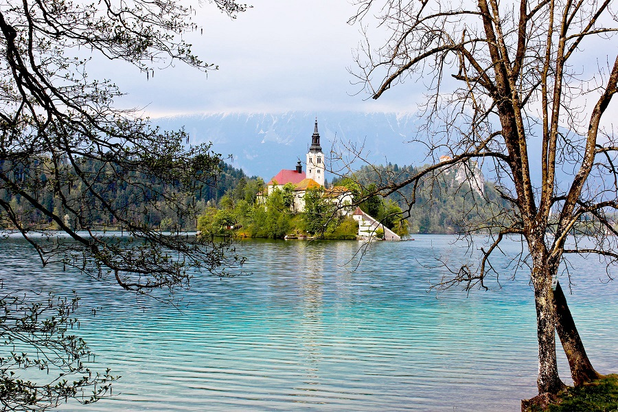 Favorite Bits of Bled