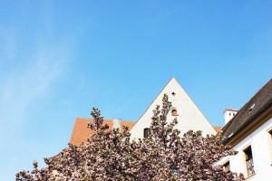 Bavaria Trip   More of Regensburg