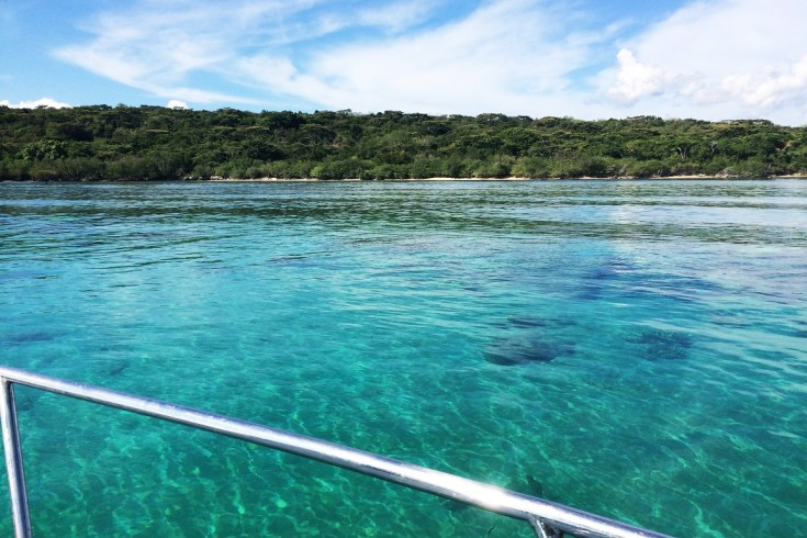 Snorkeling in Menjangan Island Bali (22)