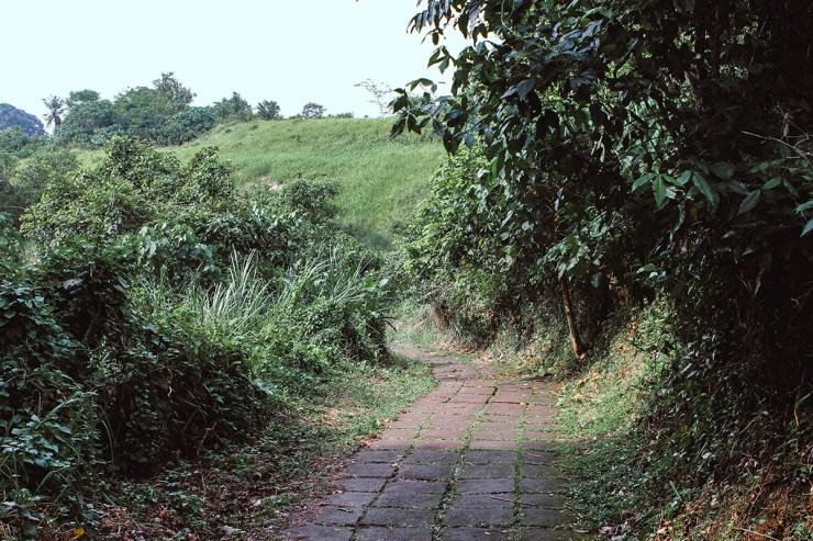 Campuhan Ridge Ubud (24)
