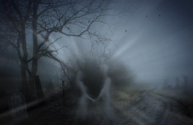 20161228 paedomabdil23593 id120234 la transmigracion de las almas segun platon La transmigración de las almas según Platón 2 - La transmigración de las almas según Platón - hermandadblanca.org