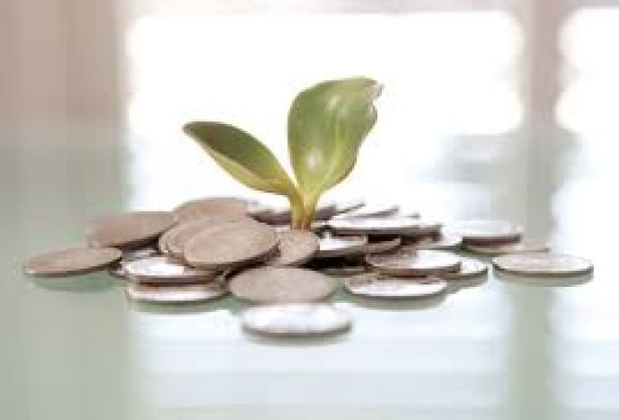moneyplant