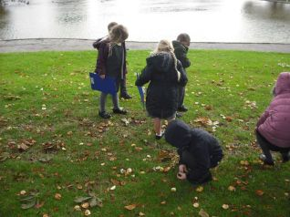 Year 1 walked to The Memorial Park to look for signs of autumn. We found conkers, acorns, fungi and plenty of yellow, orange and brown leaves.
