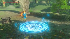 The Legend of Zelda Breath of the Wild DLC Pack 1 Trial Medallium