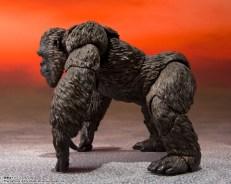 S.H.MonsterArts Kong (Godzilla vs. Kong) 02