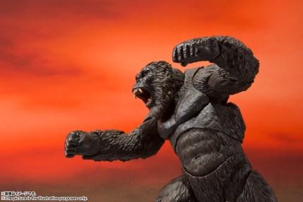 S.H.MonsterArts Kong (Godzilla vs. Kong) 06
