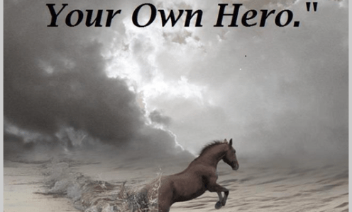The Herd Dynamic ~ Lessons for us humans.