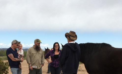 Welcome Northern Arizona V.A. Domiciliary – Your Equine Experience has begun!