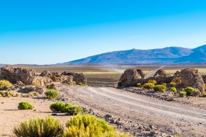 View of a road passing through agricultural field to a mountain with a Vicuna stall at the sideway in Uyuni, Bolivia