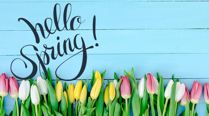 12 EASY Steps to Get Your Home Ready for Spring