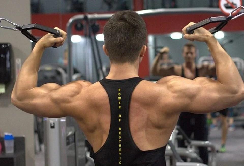 Une musculature bien déssinée grâce à la whey isolate