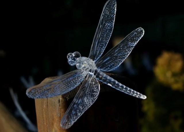 Romantique et solaire, la libellule de jardin