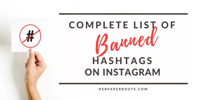 Complete list of banned hashtags on instagram. Heres What You Need To Know - Have You Been Shadowbanned? How To Actually Make Money Blogging Tools And Resouces - Passive Income - Affiliates - Content - Social Media - Management - SEO - Promote | www.herpaperroute.com