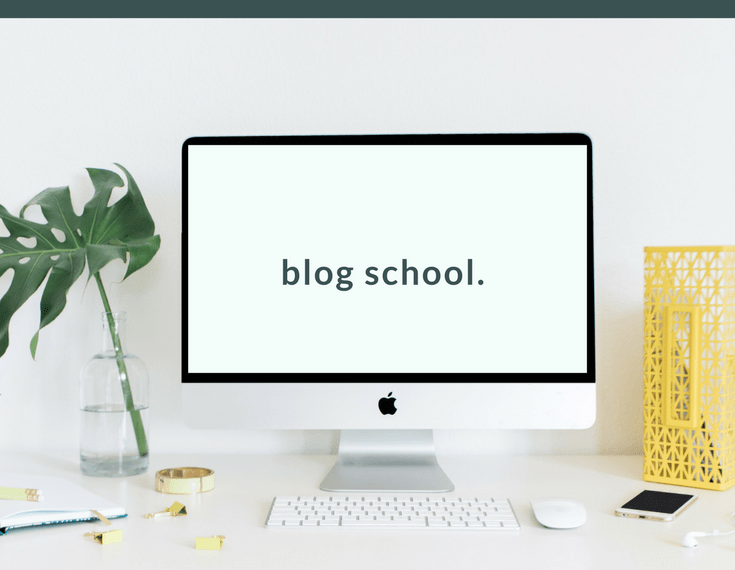 Blog Boss - Profitable From The Start - The Complete Blogging Business- Everything You Need To Know To Create, Run, Market And Monetize A Blog In 2017 - online course   herpaperroute.com
