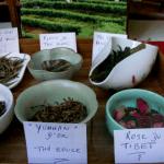 Der Teeladen Langage du Thé in Straßburg