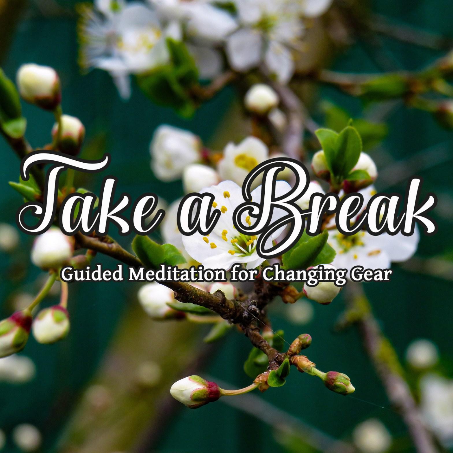 14min 3 Step Breathing Break free guided meditation