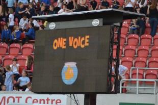 One Voice 2013