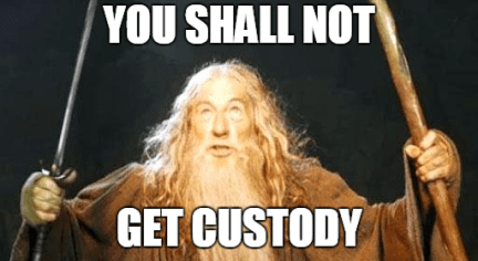 Tennessee custody