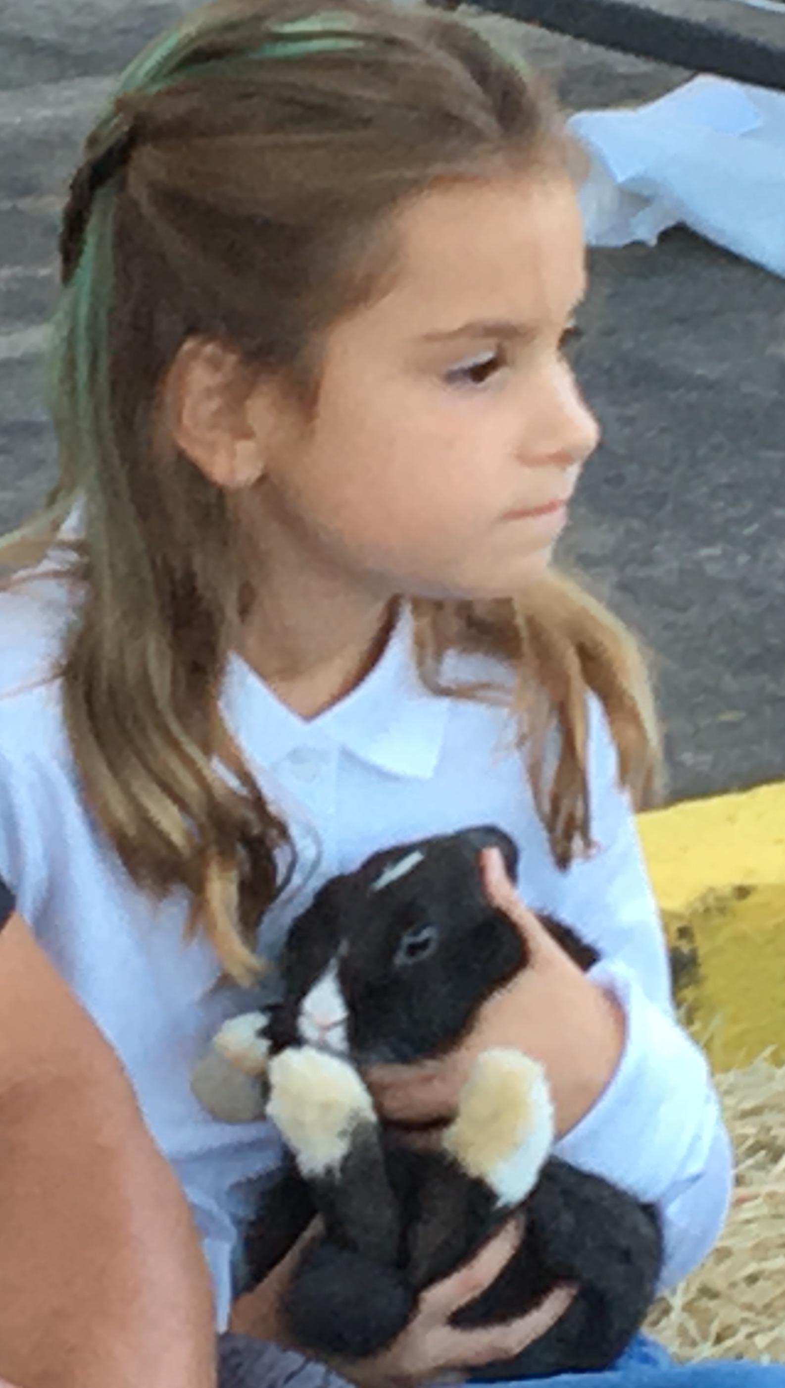 1st Annual Hertford Co 4 H Chicken Amp Rabbit Show