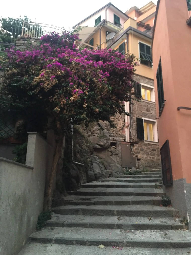 I just love these stone steps and pathways in Manarola