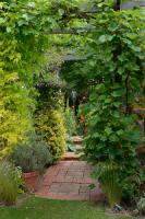 Finedon Garden1