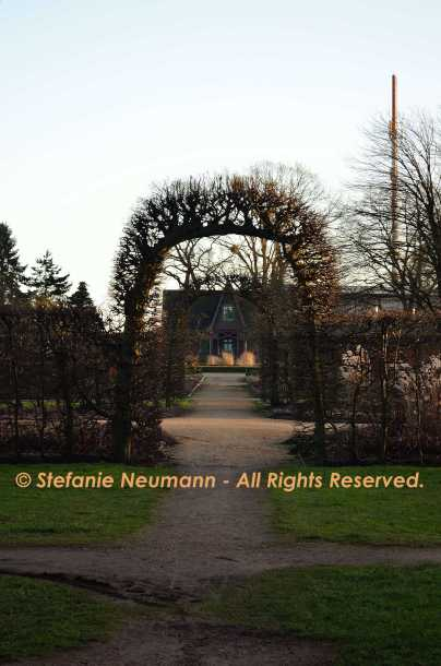 Framed Path © Stefanie Neumann - All Rights Reserved.