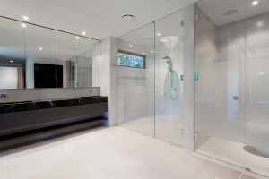 glass shower enclosure door clean seattle bellevue