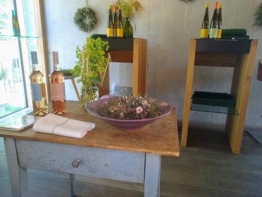 Bed & Wine Impressionen aus dem Weingut Aufricht am Bodensee