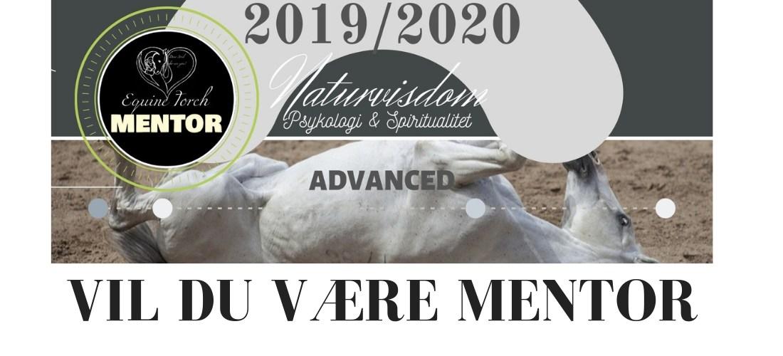 EquineTorch mentoruddannelse 2019/2020 – dig?