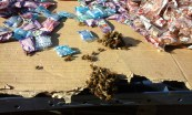 Bees searching for nourishment at the street vendor stalls – Port Shepstone Regional Hospital