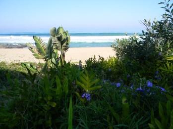 View of the beach from Mvusi River bridge