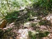 Opdraand op die Mziki wandelpaadjie tot op die platorand