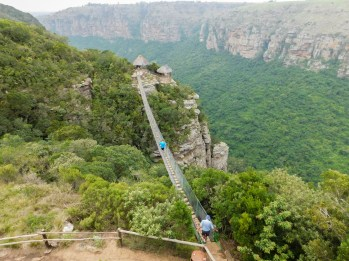Suspension bridge over a kloof with a view over the Oribi Gorge - Lake Eland Nature Reserve