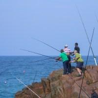 WPC Dense: Fishing