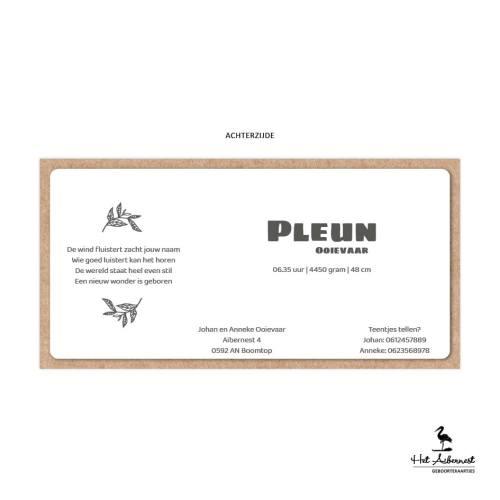 Pleun_web-az