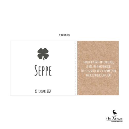 Seppe_web-vz