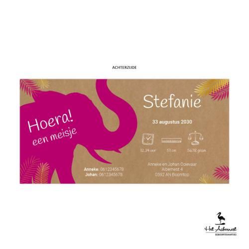 Stefanie_liggende kaart, kraftlook met olifant jungle thema