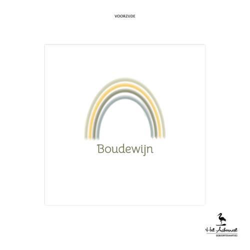 Boudewijn_web-vz