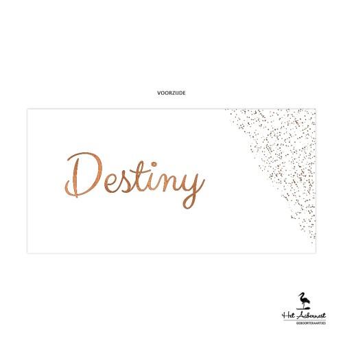 Destiny_web-vz