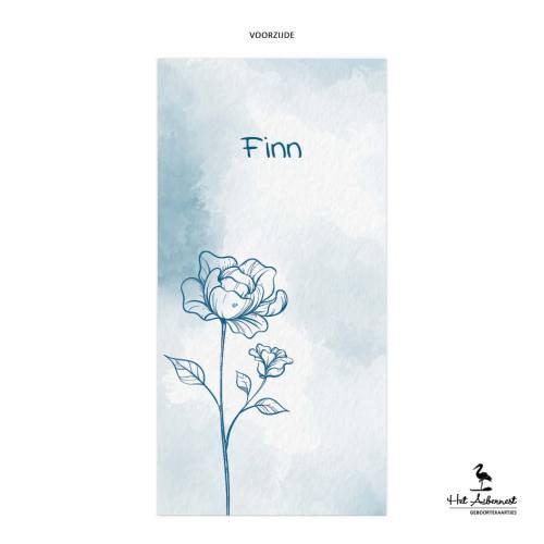 Finn_web-vz
