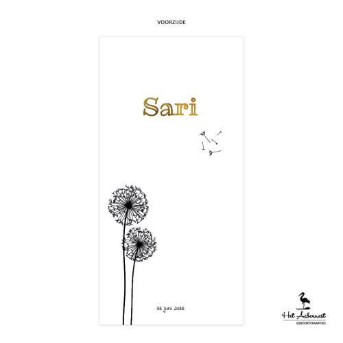 Sari_web-vz